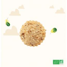 Biscuits oignon