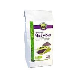 Farine de maïs violet