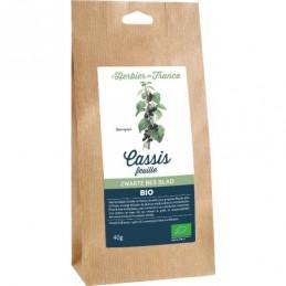 Cassis feuilles