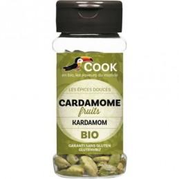 Cardamome fruits