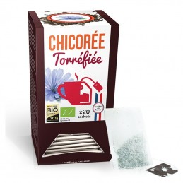 Chicorée infusettes
