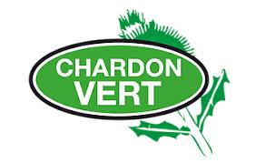 CHARDON VERT