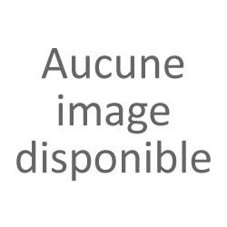 LA PEPITE VERTE- ST-JUST-D'AVRAY
